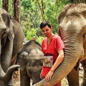 Sam Elefanten, Chiang Mai