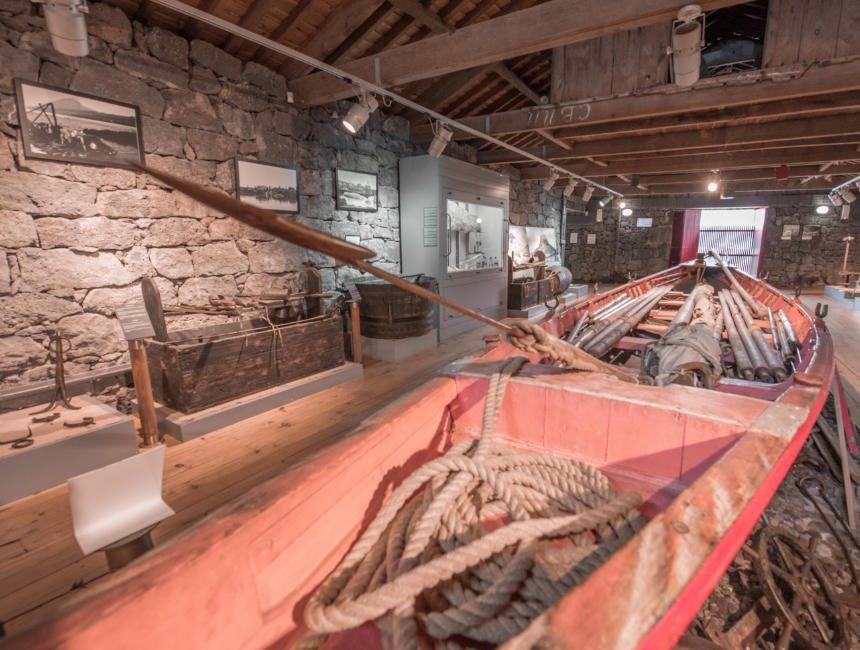 museo dos baleeiros pico Ausflüge