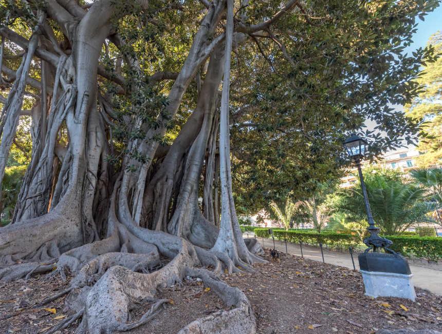 Giardino Garibaldi Sehenswürdigkeiten Palermo