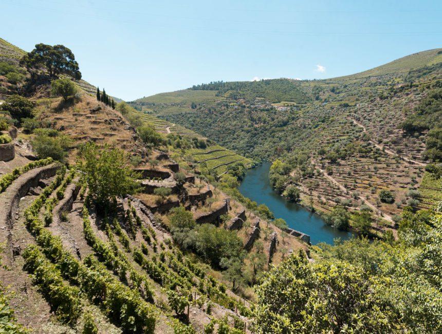 Ausflug Douro Tal