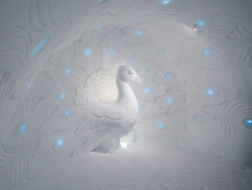 Tromso umgebung sehenswuerdigkeiten Ice Dome