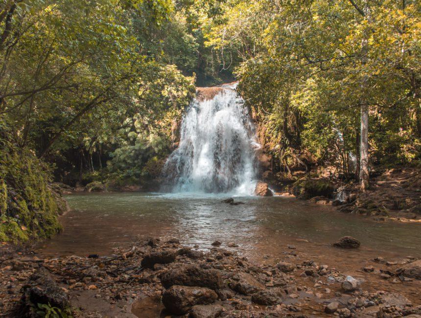 Dschungel Dominikanische Republik