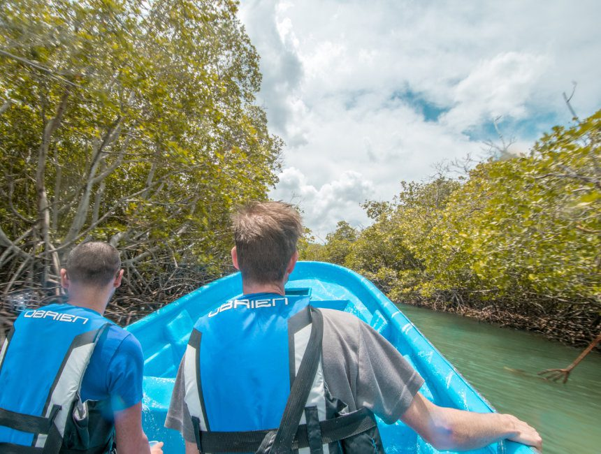 Mangrovenwald Cayo Paraiso