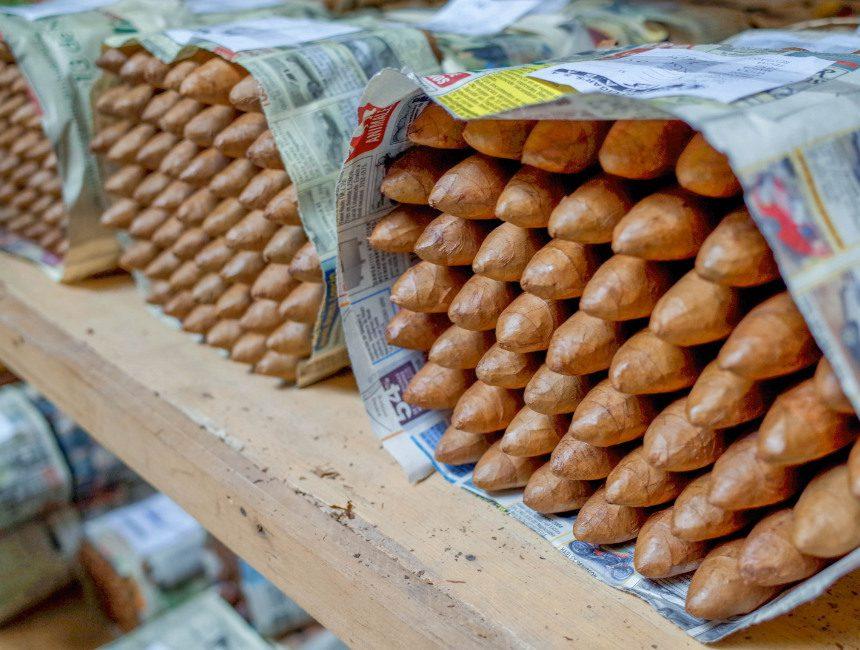 Zigarrenfabrik besuchen Punta Cana Ausflüge