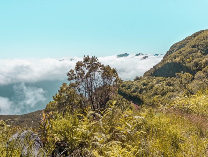 Ausflugziele madeira Pico do Arieiro