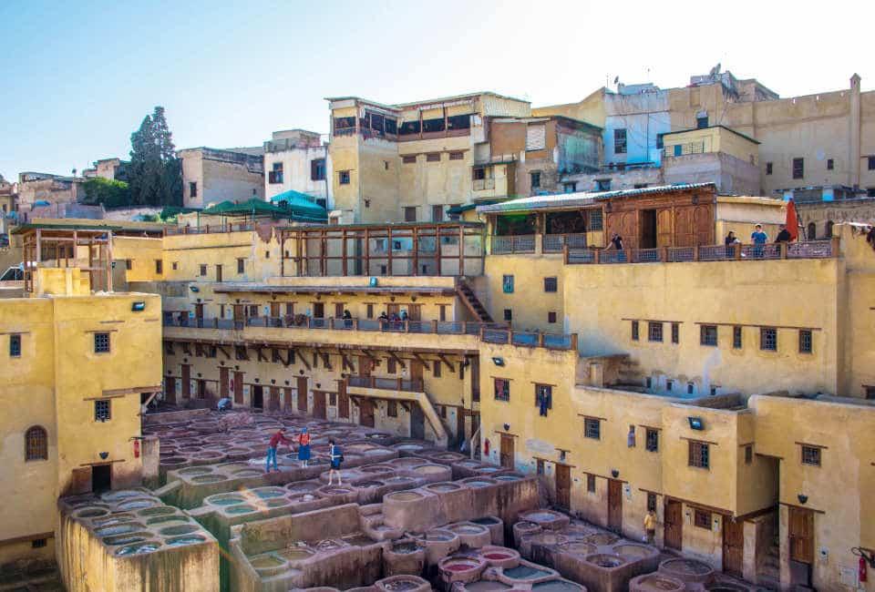 tannery fez round trip morocco